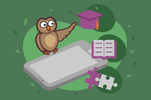 Online assessment tool for teachers