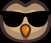 Knowlycon sunglasses